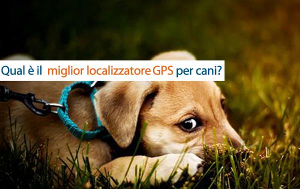 Qual è il miglior localizzatore GPS per cani?