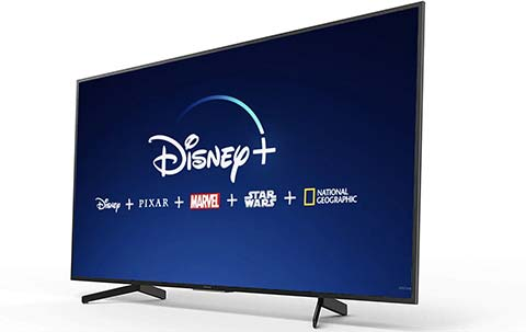 TV Disney+ Sony Bravia KD-43XG7005