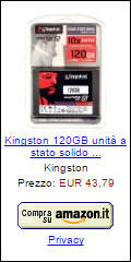 Offerta SSD Kingston 120 GB SSDNowV300